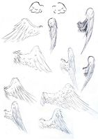Winged Study by Thilil