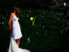 Luring Persephone by christodoulos