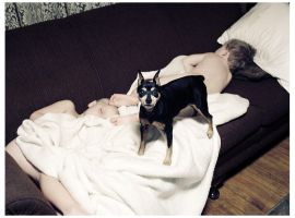 guardian minpin by FigoTheCat