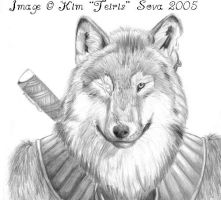Wolf Warrior by teiris