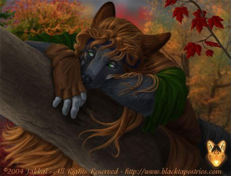 October - 2005 by JakkalWolf