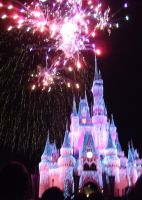 Wishes, 2009 - 35 by CanisCamera