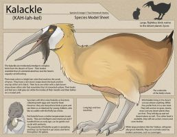 Kalackle: Species Sheet by Ulario