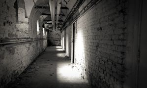 The Basement Pathway by mrk