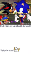 Sonic Adventure 2 Meme by Chicaaaaa