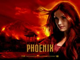 Phoenix wallpaper by sonLUC