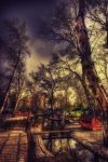 Swanheart HDR by ISIK5