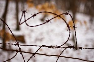 Abstract Barbed Wire by tylerscottsmith