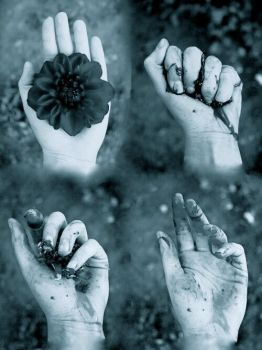 Story of a Flower Edit  by simply-unidentified