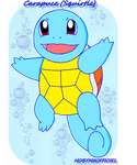 KANTO POKEMON : SQUIRTLE by HOBYMIIOFFICIEL