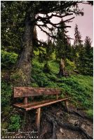 Benches After the Rain II by Argolith