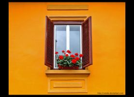 Window in Orange by vxside