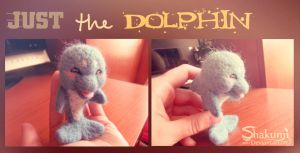 the Dolphin by Shakumi