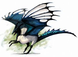 Magpie Dragon by grzanka