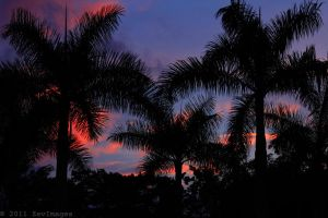 Sunset Love Costa Rica by TimberClipse