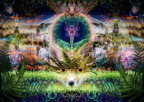 The spirit of nature / june 2015 by NeoDruidNeoArt