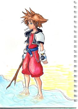 Sora on the Beach by Linka-Neo