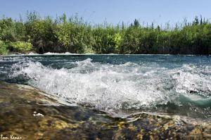 rapid water by tomkenar