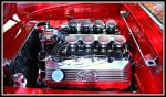 427 SOHC In Thunderbird. by StallionDesigns