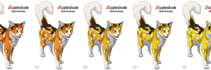 Five shades of Mapleshade by Vialir