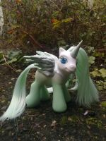 Shiyas pegasus custom by assassin-kitty