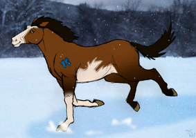 One horse, no sleigh by KigerwolfRD