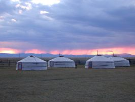 Yurt camp in Mongolia by frontonas