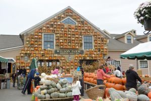October 2014, Local Farm Stand 2 by Miss-Tbones
