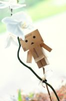 Danbo equilibriste by Simon120188