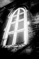 Midnight Window by Bazz-photography