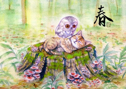Owl hanging out with a kitty cat by meomeoow