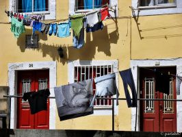 interesting laundry... by pariah87