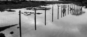 Fences in flood - Wick by paters87