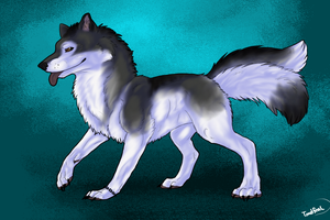iNaima Wolf by Toadfoal