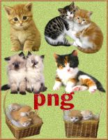 cats 1853 png by roula33
