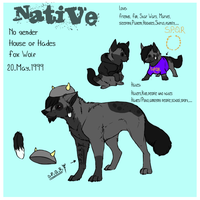 Official Native Sheet 2013  // Native 3.0 by LordNative