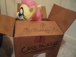 The Care Package by SurgicalArts