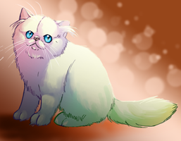 Persian kitty. by Elzux