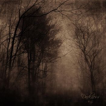 In the Darkness ... by DilekGenc