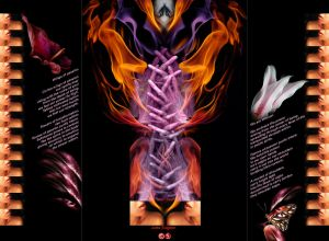 Wings of Passion -Triptych