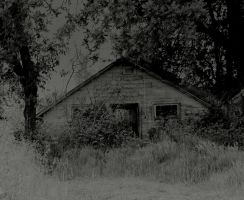 Seclusion... by thewolfcreek