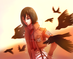 Mikasa - Take Flight by Noctuart