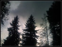 Before a Storm. by jareth1fan