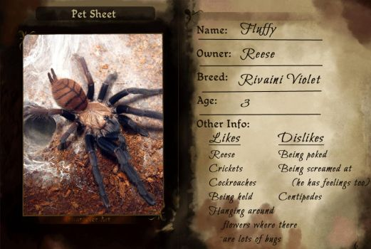 TMM - Fluffy Pet Sheet by Wirls