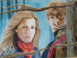 Hermione and Ron by GeorgeKor