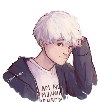 i am not a morning person by amiette
