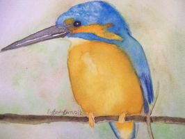 Kingfisher by Bexter-TheLil-Ferret
