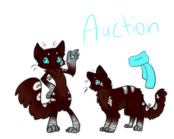 Design  Auction by Pikahus-Adopts