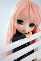 Pullip named Heidi by Miema-Dollhouse