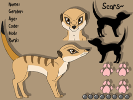 Meerkat Reference Sheet: Adult by PancakeShiners